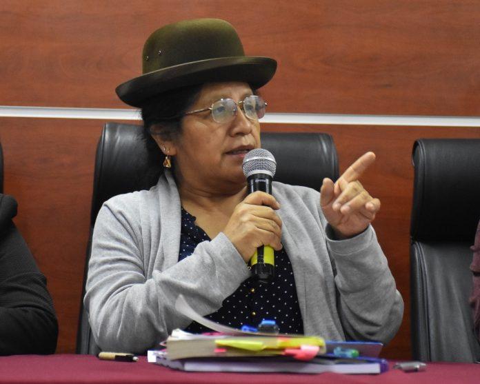 La presidente del Tribunal Supremo Electoral; María Eugenia Choque. APG.